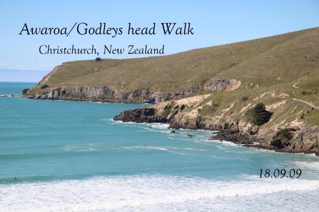 クライストチャーチ郊外トレッキングAwaroa/Godley head Walk